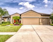 312 Star Shell Drive, Apollo Beach image