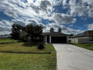 317 Marquee Drive, Kissimmee image
