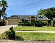 2610 Durant Oaks Drive, Valrico image