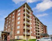 8400 Callie Avenue Unit #505, Morton Grove image