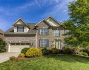238  Mcduffie Lane, Fort Mill image