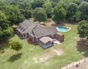 10335 Skewlee Road, Thonotosassa image