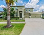 11026 Spring Point Circle, Riverview image