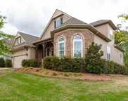 16814  Coves Edge Lane, Charlotte image
