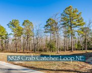 3828 Crab Catcher Loop Ne, Leland image