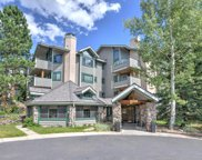 31819 Rocky Village Drive Unit 317, Evergreen image