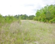 Lot 0 Bethel Cemetary Road, Reevesville image