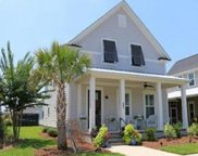 607 Long Meadow Street, Summerville image