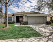 2609 Thames River Place, Valrico image