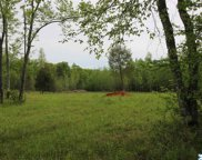 tract 18 Cook Road, Ardmore image