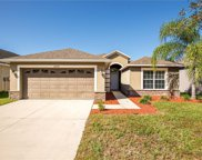 20432 Autumn Fern Avenue, Tampa image