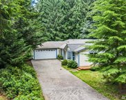 10412 108th St, Anderson Island image