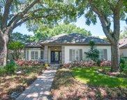 1411 Oak Tree Court, Apopka image