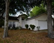 17312 Silver Creek Court, Clermont image