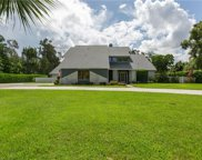 15641 S Pebble  Lane, Fort Myers image