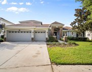 2819 Park Meadow Drive, Valrico image