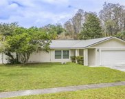 5439 Ripple Creek Drive, Tampa image