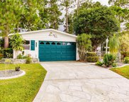 19675 Eagle Trace  Court, North Fort Myers image