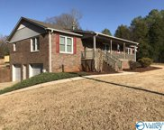 12641 Grigsby Ferry Road, Elkmont image