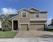 3827 Morgons Castle Court, Land O' Lakes image