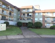 45598 Mcintosh Drive Unit 319, Chilliwack image