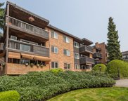 1011 Fourth Avenue Unit 205, New Westminster image