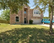 172 Coneflower Dr, Kyle image
