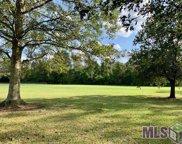 2719 Laurel Lakes Ave, Baton Rouge image