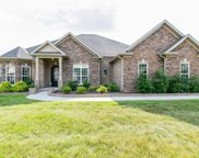 8000 Brightwater Way, Spring Hill image