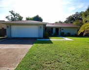 15909 Old Stone Place, Tampa image
