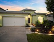 11230 Madison Park Drive, Tampa image