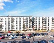 9128 W Terrace Drive Unit #1N, Niles image