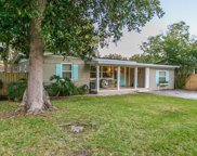 353 FORTUNA AVE, St Augustine image