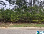 41 Lakeside Valley Dr Unit 12A, Pell City image