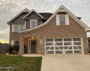 9909 Cinnamon Lane, Knoxville image