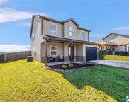 55 Briar Ridge Lane, Odenville image