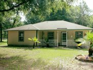 3802 Knowles Pit Road, Green Cove Springs image