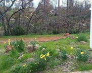 617     Circlewood Drive, Paradise image