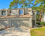 447 SELVA LAKES CIR, Atlantic Beach image