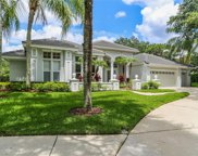 17801 Osprey Pointe Place, Tampa image