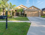 8202 Myrtle Point Way, Tampa image