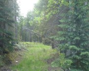 6803 Snowshoe Trail, Evergreen image