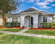 2124 Florida Soapberry Boulevard, Orlando image