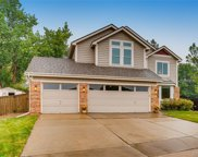 10067 Andrush Court, Lone Tree image