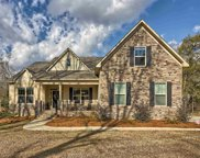 3012 Wessinger Road, Chapin image