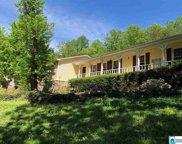 11 Oak Ridge Ln, Odenville image