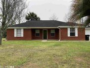3166 S Holley St, Loxley, AL image