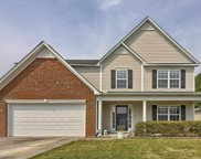 245 Hunters Mill Drive, West Columbia image