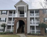 3792 Hitchcock Way Unit 235, Myrtle Beach image