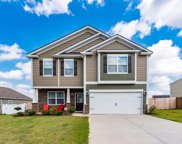 1107 Downing Bluff Drive, Simpsonville image